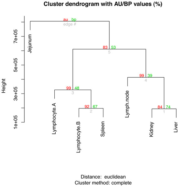 Hierarchical clustering of gene expression profiles in seven tissues.