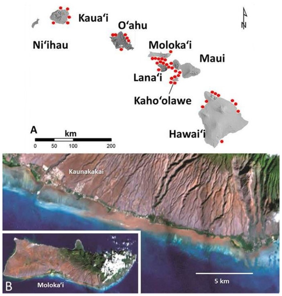 Images of red terrigenous sediment in the Hawaiian islands.