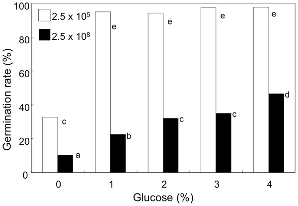 Effect of glucose concentration on germination of A. flavus conidia.