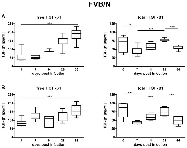 TGF-β1 content in the sera of FVB/N mice suffering from lyme disease.