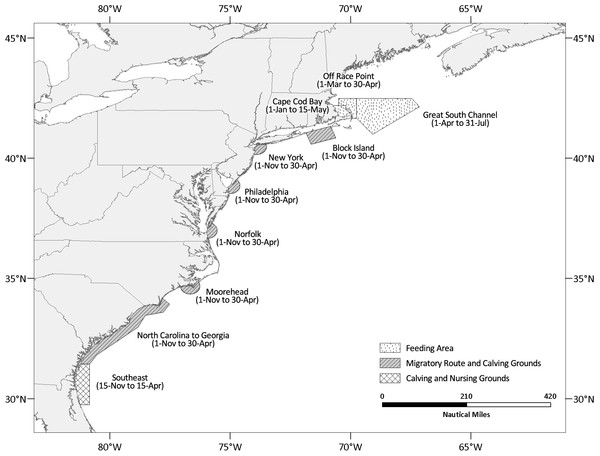 Map depicting the location and active periods of the north Atlantic right whale seasonal management areas (SMAs).