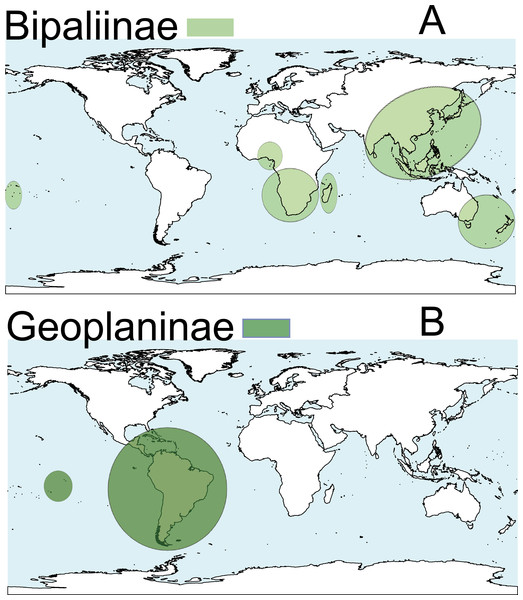Distribution map of the terrestrial flatworms.