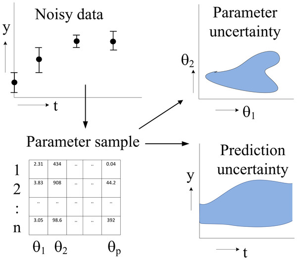 Flowchart of parameter estimation and uncertainty analysis.