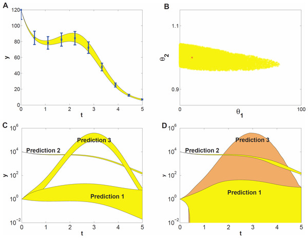 Prediction uncertainty following from parameter uncertainty and computational methods.