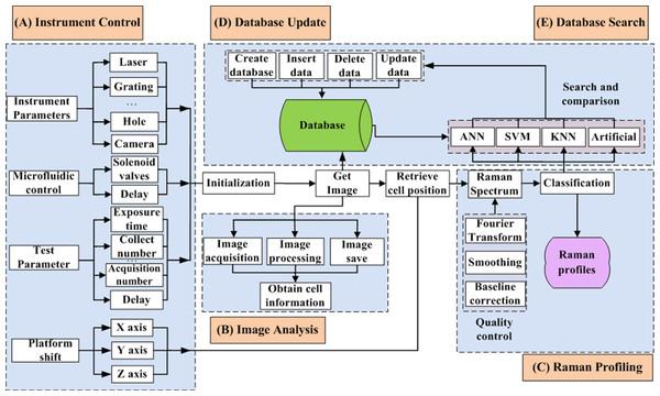 Framework of QSpec.