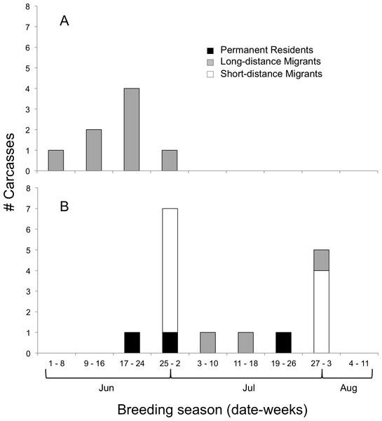 Timing of bird-window collisions throughout the breeding season.