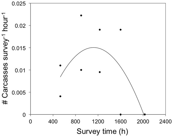 Daily timing of bird-window collisions during the breeding season.