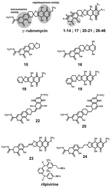 Structures of the tested γ-rubromycin-based ligands.