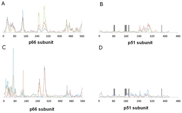 Relative contribution of each amino acid displacement to the first six non-trivial normal modes of HIV-1 reverse transcriptase.