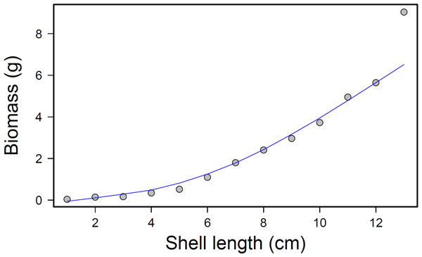 Mussel biomass vs. shell length regression.