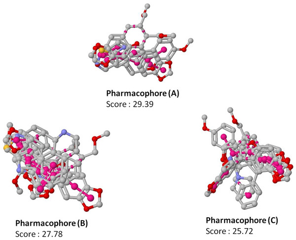 Top scoring pharmacophore models (A, B and C) identified along with the alignment with the input molecules.