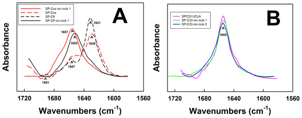 FTIR spectra of the amide I bands for SP-C mimic peptides in surfactant lipids (DPPC:POPC:POPG 5:3:2).