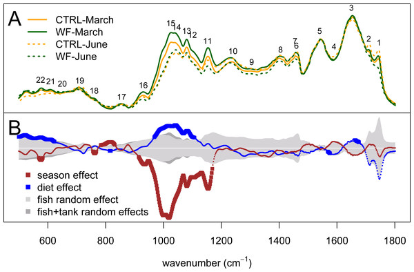 Univariate statistical analysis of the FT-IR spectra.