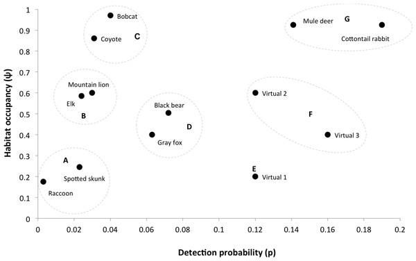 Occupancy estimates and detection probability for 10-mammals and three virtual species that we used to investigate sampling design trade-offs in a simulation exercise.