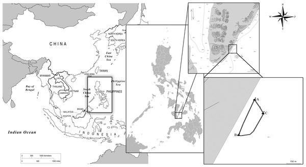 Map of the study site and interaction area demarked by buoys (A, B, C) in Barangay Tan-Awan, Municipality of Oslob, Cebu Province, Philippines.