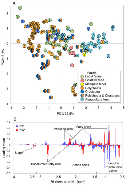 Metabolic variations based on 1H NMR profiling of various fishes evaluated by PCA.
