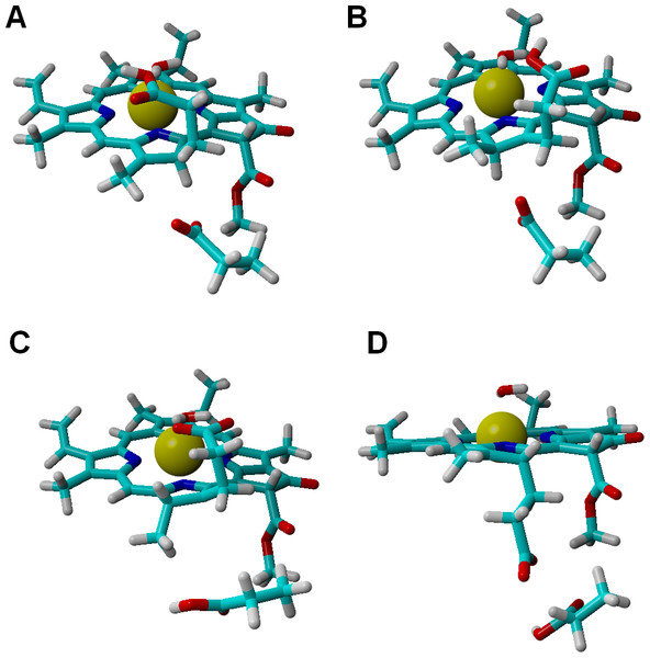Structures of intermediates with a singly-protonated C17=C18 bond at the one-electron-reduced state.