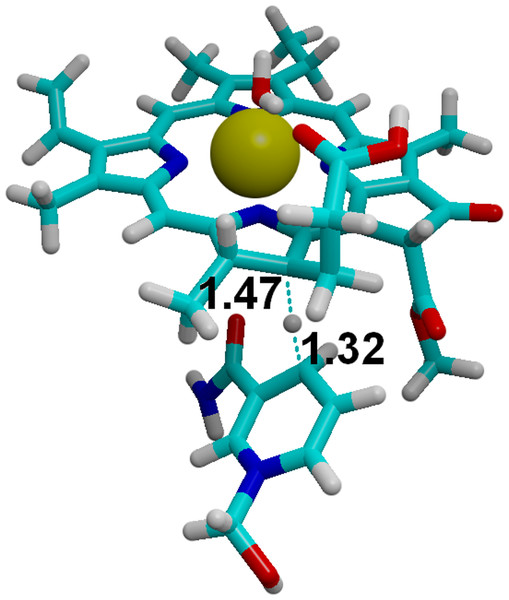 Hydride transfer from NADPH to C18-protonated PChlide.