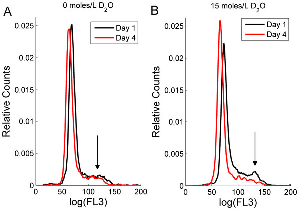The effect of deuterium oxide on RBL-2H3 cell cycle as shown by propidium iodide intensity (FL3) histogram plots.