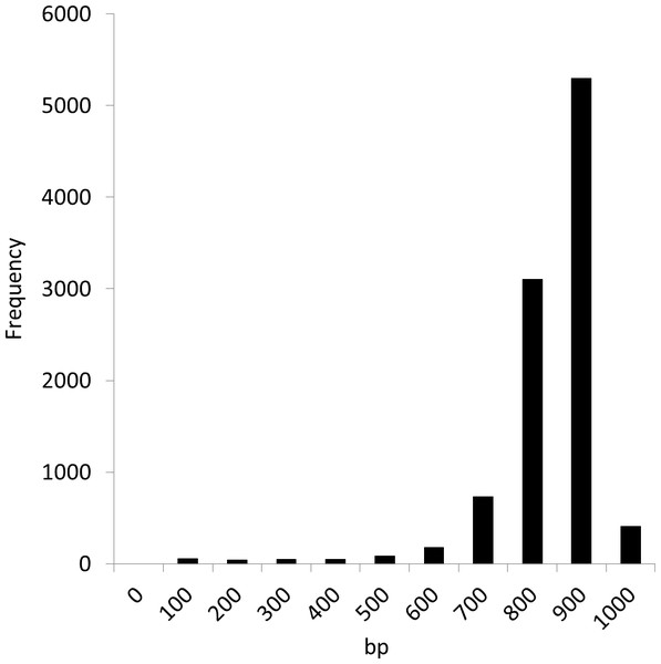Length distribution of the first 10,000 fragments of the Sargasso Sea dataset.