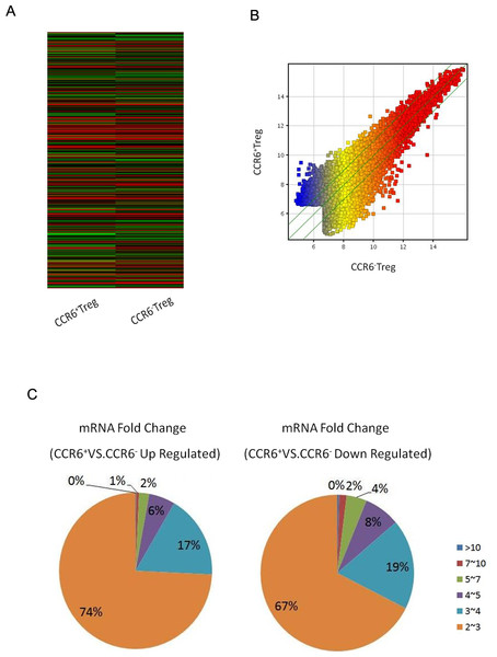 Gene expression in CCR6+ Tregs detected by microarray assays.