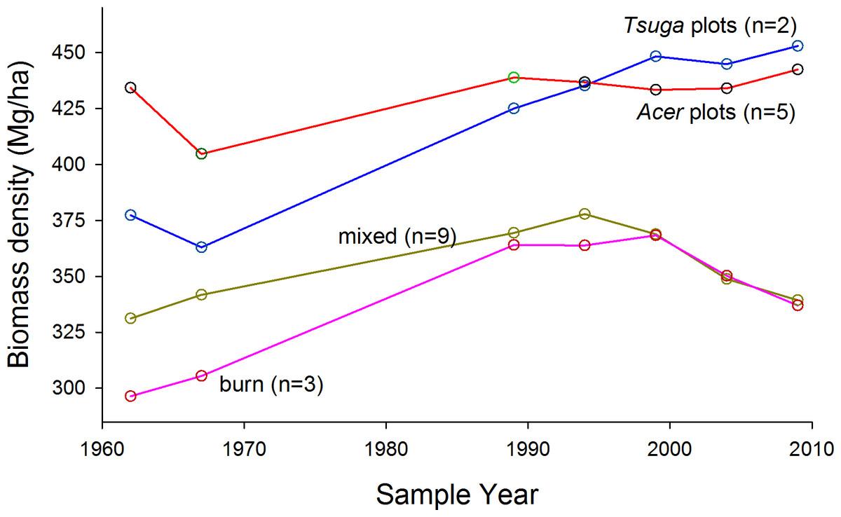 Multi-decade biomass dynamics in an old-growth hemlock-northern ...