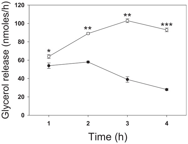 Time dependence of butyrate on rates of lipolysis in 3T3-L1 adipocytes.