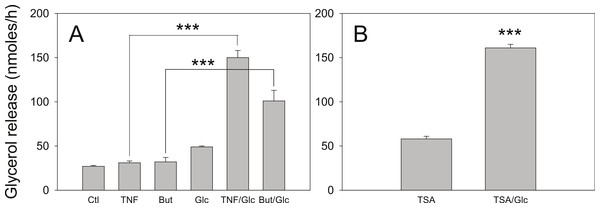 Effect of glucose on the lipolytic effect of butyrate and trichostatin A.