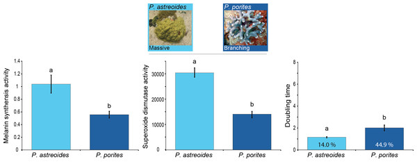 Relation between immunity and colony morphology and growth rates in corals.