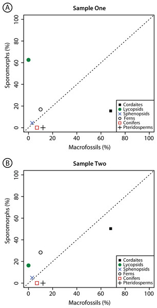 Comparison composition macrofossil and sporomorph assemblages.