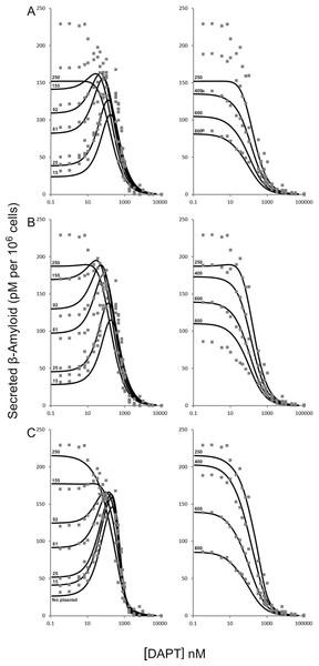 Modulation of γ-secretase by DAPT.