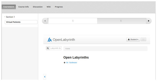 A learner is authorized in Open Labyrinth to view the learning content.