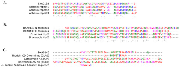 "Multiple sequence alignments of (A) BXA0138, (B) BXA0139 and (C) BXA0140 with the identified similar sequences (for details see ""Results"" section)."