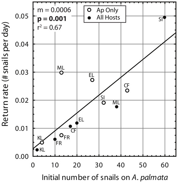 Coralliophila abbreviata recolonization rate.