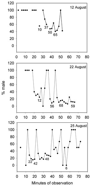 Large changes in sex ratio characterize the spawning period of Bolbometopon muricatum as reproductive schools of females move over the aggregation site at Wake Atoll.