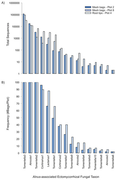 Rank-abundance (A) and rank-frequency (B) plots of Alnus-associated ectomycorrhizal fungal taxa sampled in mesh bags and root tips.