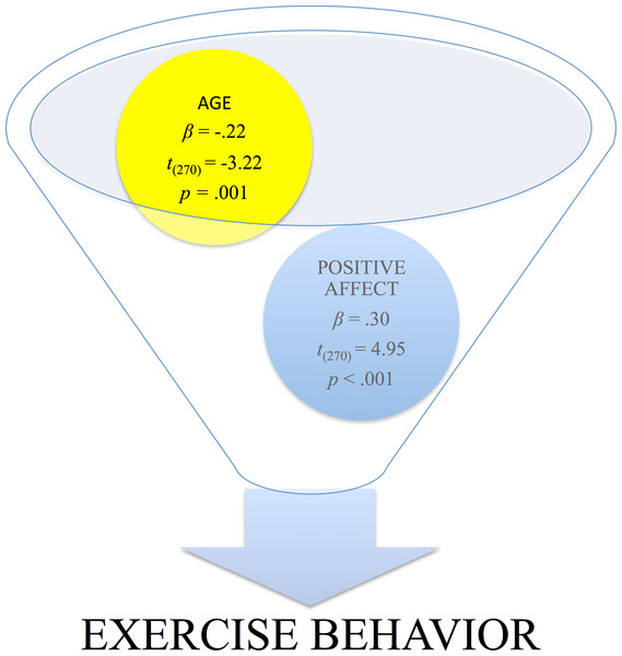 "The association of positive affect in the prediction of long-term compliance in the propensity to perform physical exercise, i.e., ""exercise behavior."""