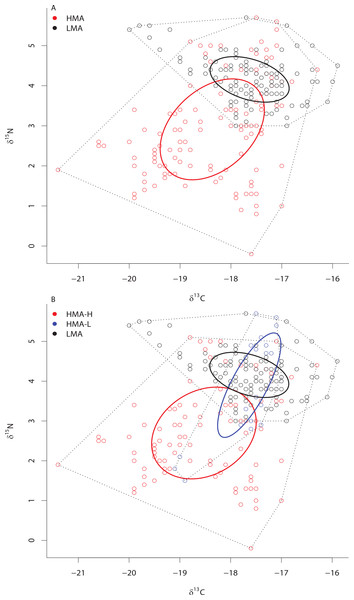 Bivariate δ13C and δ15N plot depicting the placement of HMA and LMA (A) and HMA sponges with high and low chl a concentrations (HMA-H and HMA-L, respectively) and LMA groups (B) within the isotopic niche space of the Miskito Cays.
