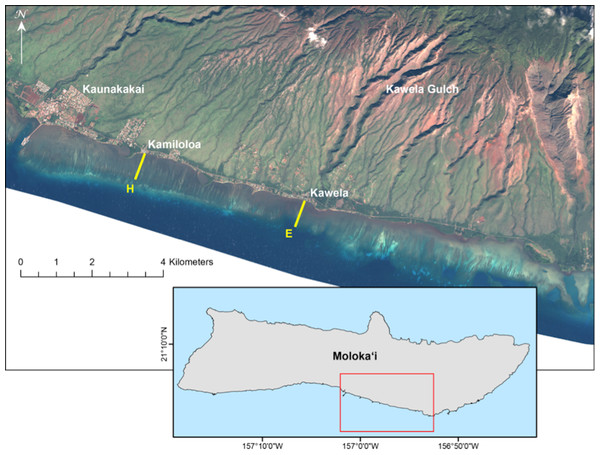 Landsat satellite image of study site on the south shore of Molokaʻi, Hawaiʻi.