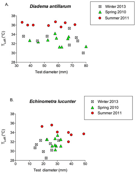 TLoR as a function of test size in (A) Diadema and (B) Echinometra collected in the winter, spring, and summer.