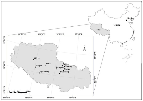 Location of sampling sites of alpine grasslands in Tibet.