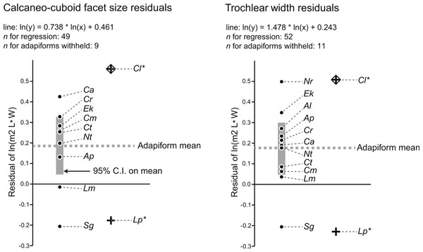 Residuals for the natural log of M2 area of adapiforms following recalculation of regression of the natural log of M2 area on tarsal facet area excluding those adapiform species.