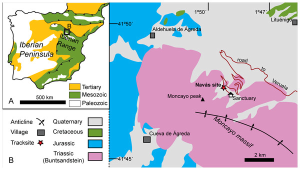Geological setting of the Triassic outcrops in the Moncayo Massif.