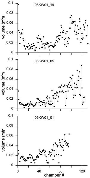 Variation in chamber volumes for three specimens of N. djokdjokartae.