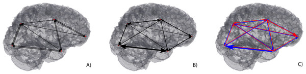 Macroscopic brain connectivity display through 3D Graphs.