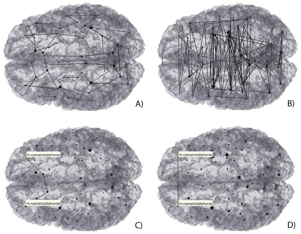 3D Graph visualization of direct (A) and (C), and mediated (B) and (D) hybrid structural-functional brain connectivities.