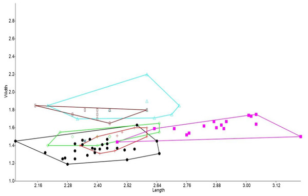 Bivariate plot comparing M1 between murine species.