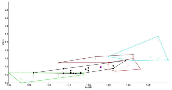 Bivariate plot comparing M2 between murine species.