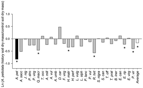 The log response ratio of plant biomass without competition in A. petiolata history relative to control soil.