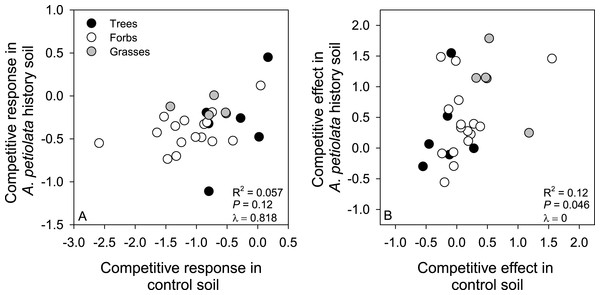 Relationships between competitive response (A) or competitive effect (B) across control and A. petiolata history soils.
